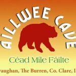 Aillwee Cave & Burren Birds of Prey Centre