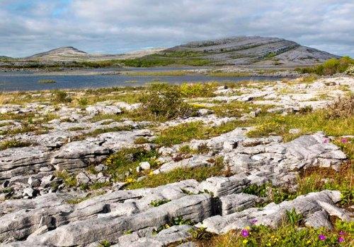 Wild Burren Cultural Tour of Clare